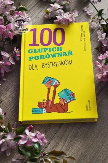 100 głupich porównań dla bystrzaków, Stephane Frattini - recenzja książki.