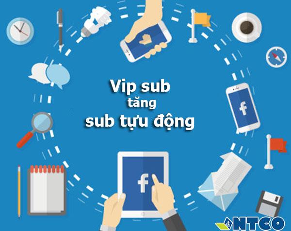 dich vu tang sub facebook