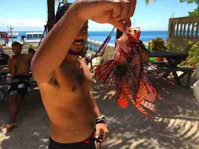 Captured Lionfish