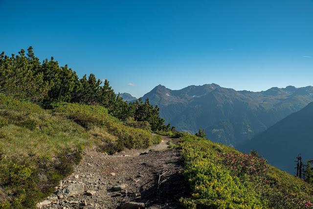 Panoramaweg Gantakopf  Wandern im Montafon 10