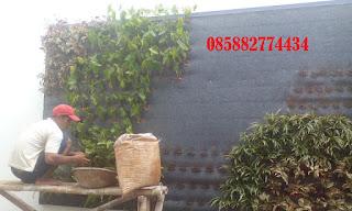 Jasa pembuatan vertical garden harga murah
