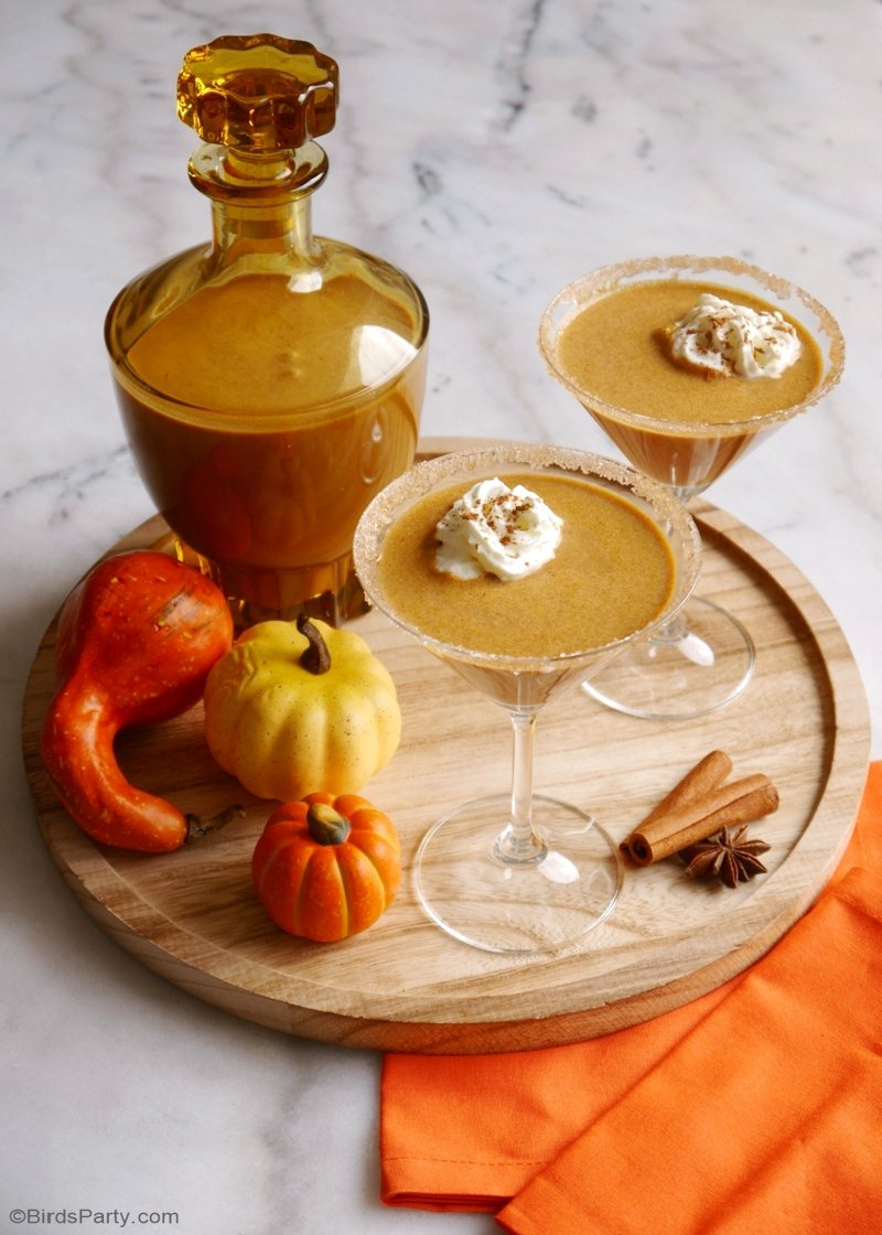 Homemade Pumpkin Spice Irish Cream Cocktail - inexpensive, quick and easy to make, this drinks recipe makes for the perfect Fall beverage! by BirdsParty.com @birdsparty #homemadebaileys #cocktail #pumpkinspice #pumpkinspicelattecocktail #falldrinks #fallbeverages #fallcocktails #pumpkinspicecocktail #irishcream #pumpkinbaileys