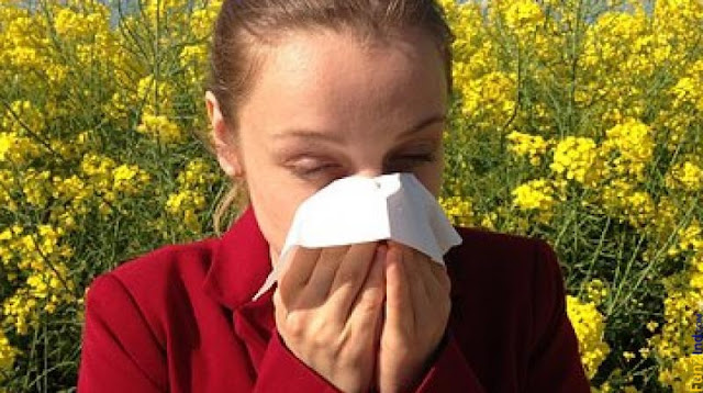 Newly found mechanism could pave way to end allergic reactions