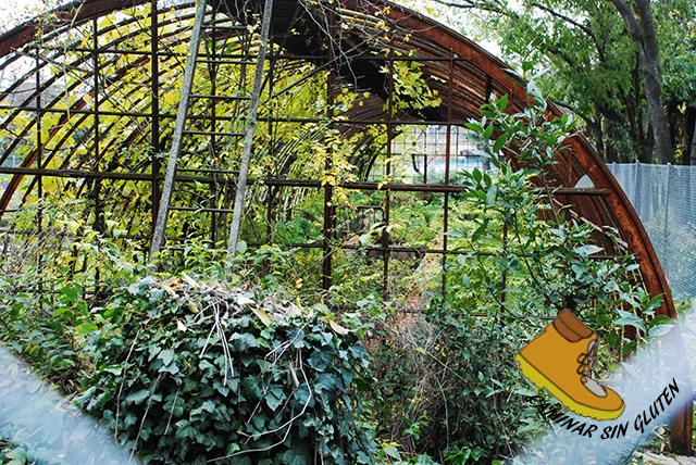 Invernadero abandonado en Quinta de Torre Arias