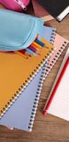 Dik27: Cadernos E Canetas Coloridas