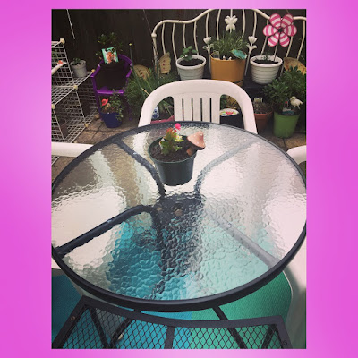 outdoor dining patio in urban patio garden with glass circl patio table and plastic chairs