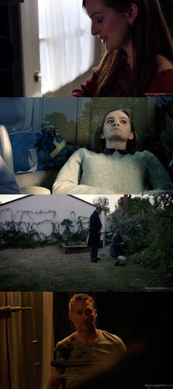 Tótem (2017) HD 720p Español Latino