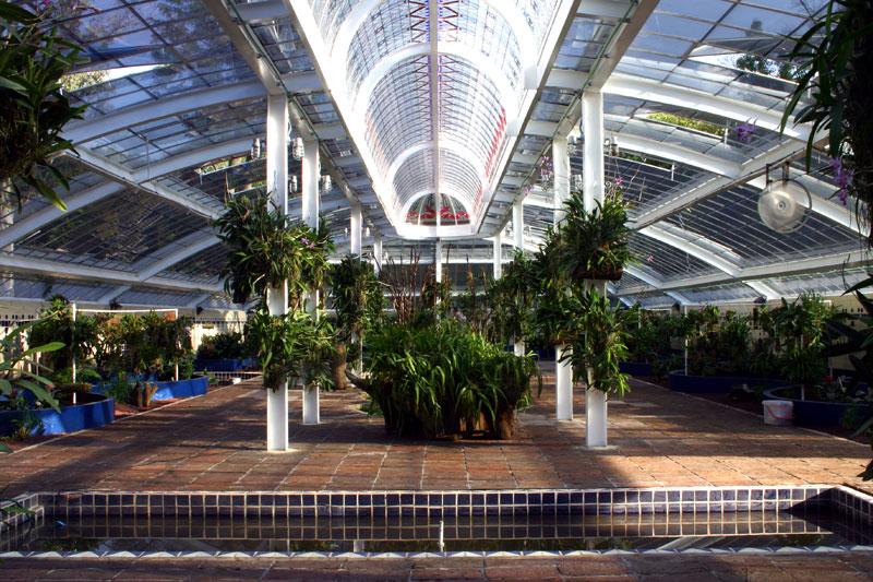 Mexicreto visitas guiadas con historia sabado 6 de for Caracteristicas de un jardin botanico