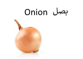 بصل : Onion