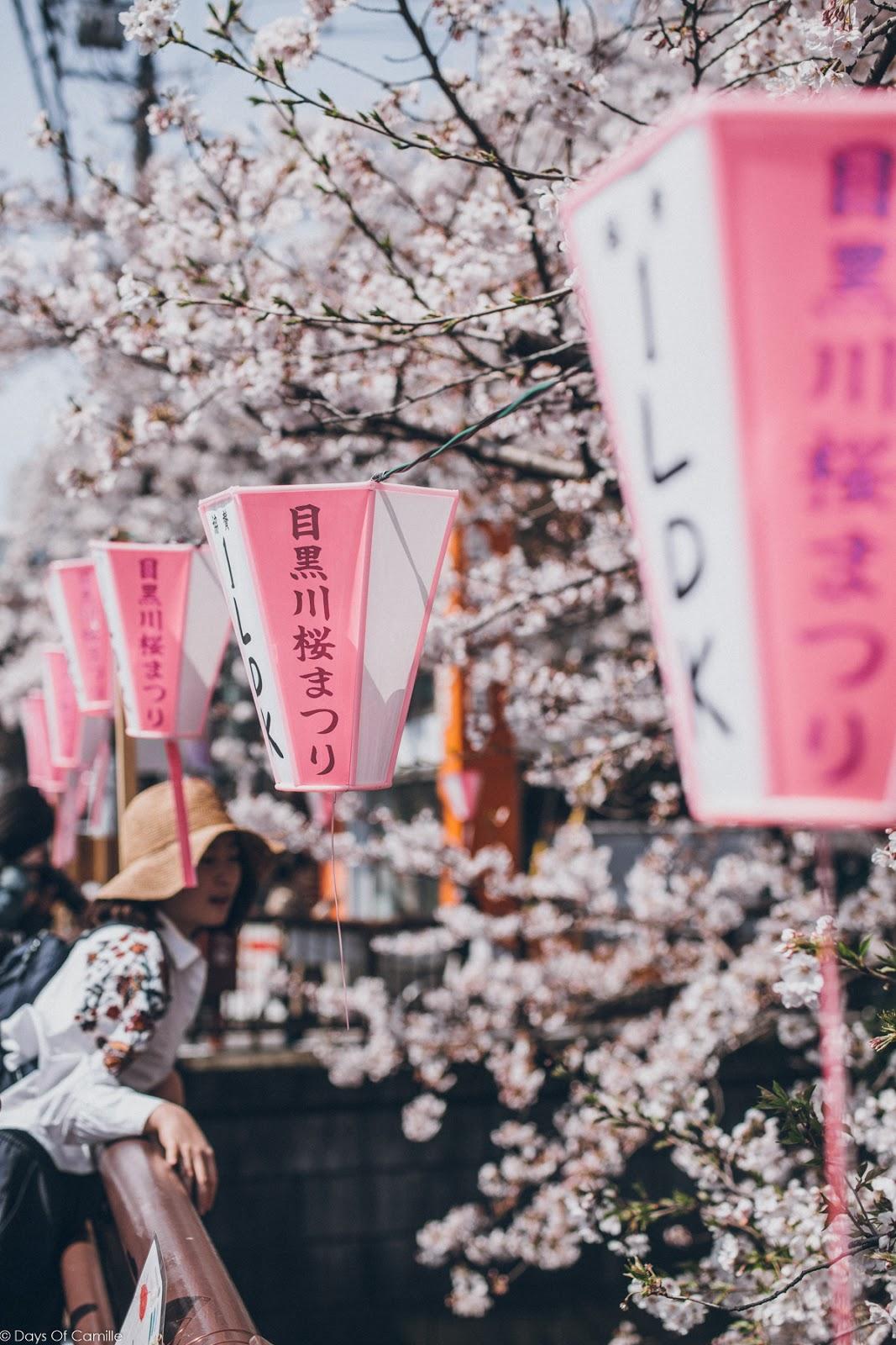 Tokyo Ep.1 - Nakameguro & bonnes adresses