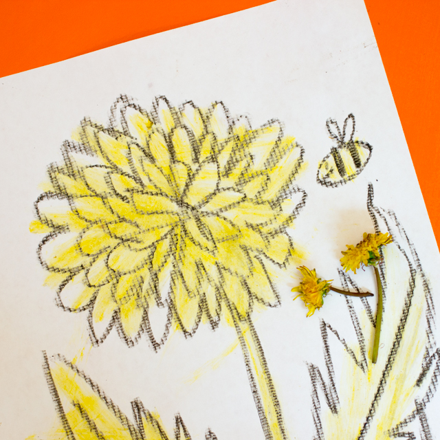 how to paint with dandelions- a fun spring and summer craft for kids