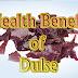 Amazing 9 Health Benefits of Dulse