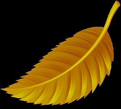 daun png