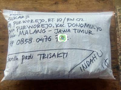 Benih pesanan SUKARJI Malang, Jatim.   (Sesudah Packing)