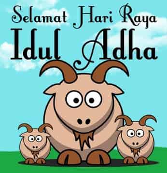 Insyaallah umat Islam di seluruh dunia dan nusantara khususnya akan merayakan hari raya i 12 Tips Mengolah Daging Kambing, Domba, Sapi Agar Tidak Bau dan Alot
