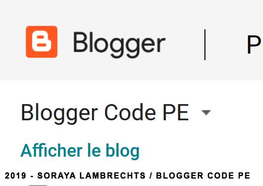 Menu déroulant dans l'interface permettant de switcher d'un blog à l'autre.