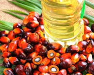 how palm oil trading opportuntiy makes you rich investing as a wholesale distributor