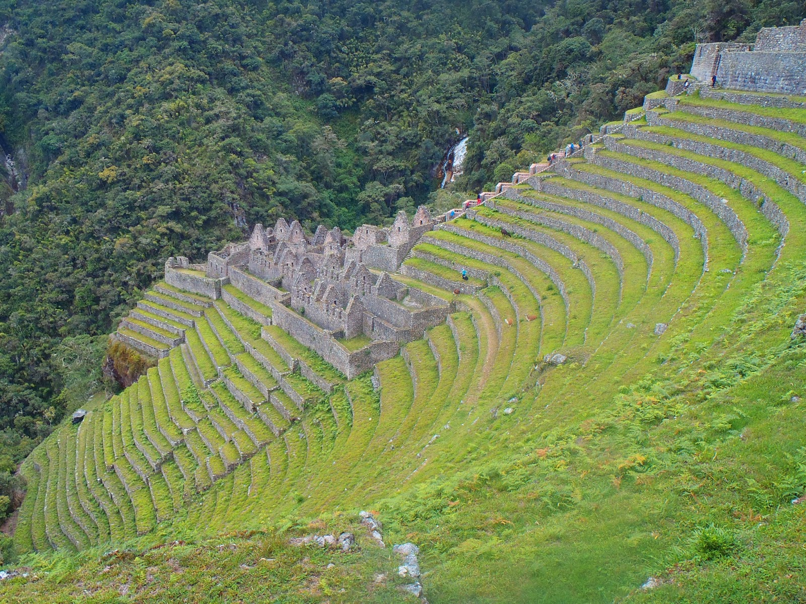Winay Wayna Peru