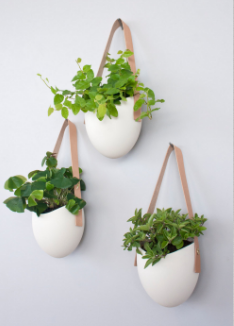 This Set Of Three Porcelain Planters Would Be Pretty In A Bathroom Or With Herbs Kitchen