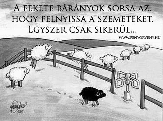 Nyisd ki a szemed