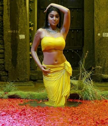 Beautiful Actress Portal: South Actress Shriya Saran Hot