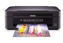 Epson NX230 Driver Download