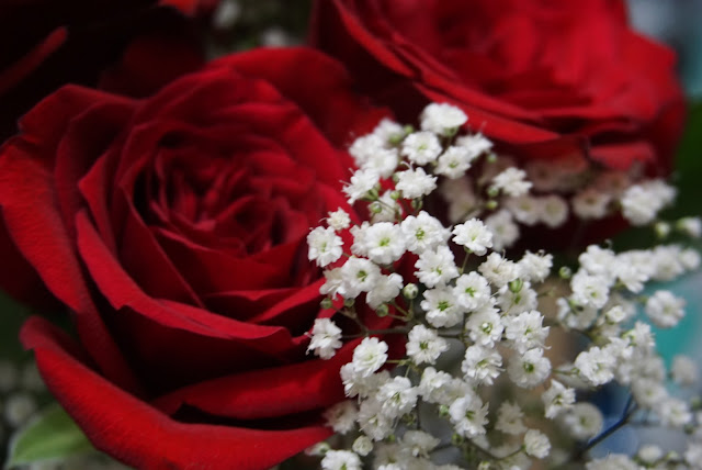 Roses are Red by Sony a6000