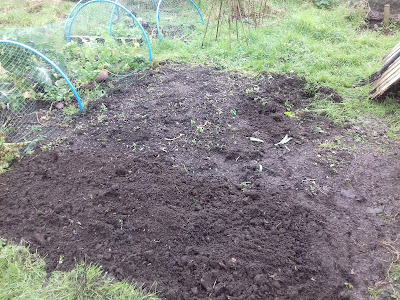 Allotment Growing - Adding Compost