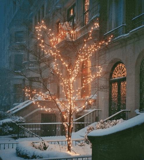 أجمل صور لفصل الشتاء جميلة جدا