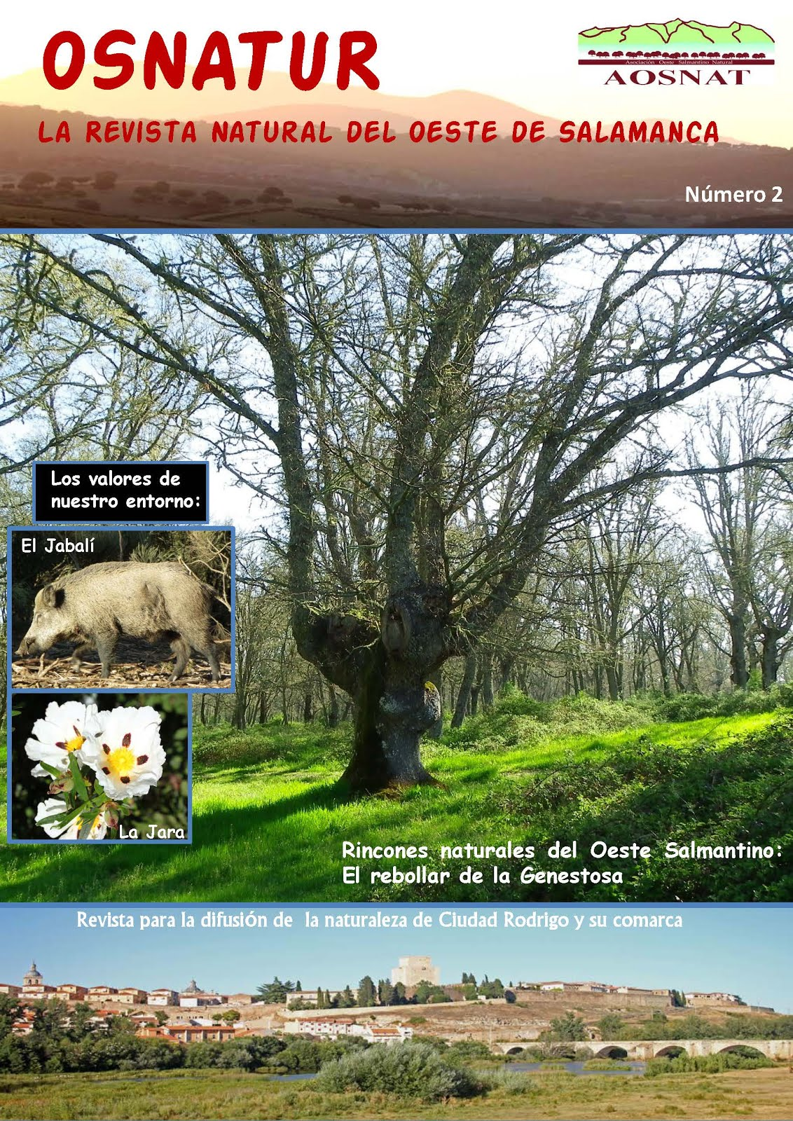 Revista Osnatur Nº 2
