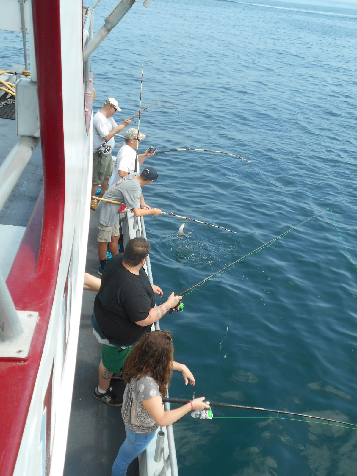Nj salt fish 2016 07 10 captain cal belmar for Fishing report nj
