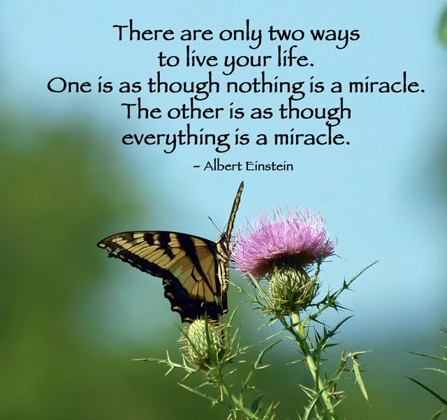 A Little Piece of Me: Everything is a Miracle