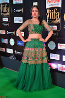 Nandita Swetha in a tight Green Choli Ghagra at IIFA Utsavam Awards March 2017 ~ 037.JPG