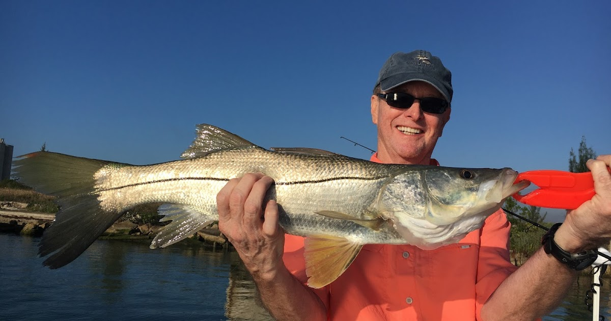 Captain charlie 39 s fish tales charters south indian river for Rainy river fishing report 2017