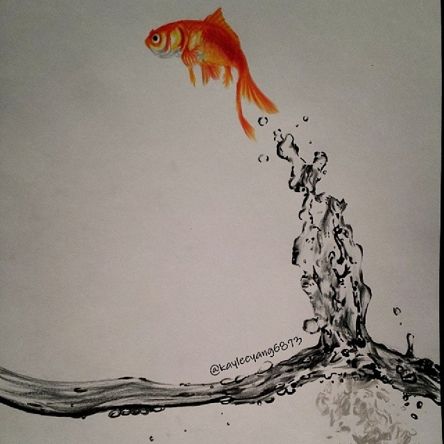 15-Goldfish-Kaylee-Yang-nalikaylee-Realistic-Drawings-which-Include-Animals-and-Objects-www-designstack-co