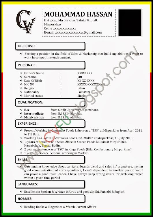 MS Word CV Format, Latest CV Format 2014, New CV Formats, New Design ...