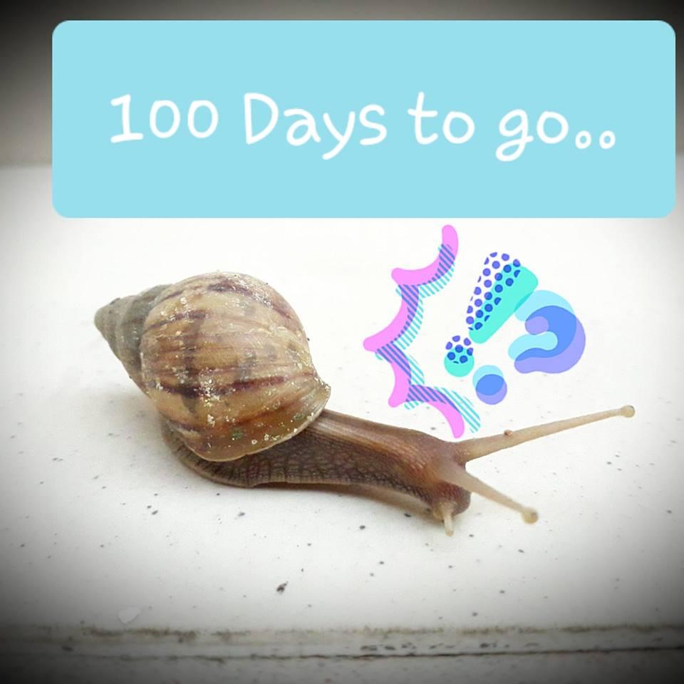 2018 Tinggal 100 Hari lagi!