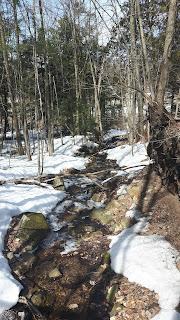 Sentier l'Escapade, mont Rigaud, printemps, traces de neige