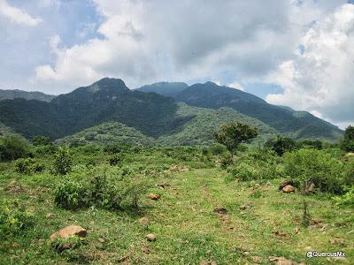 Cerro Viejo desde camino a Zapotitán de Hidalgo