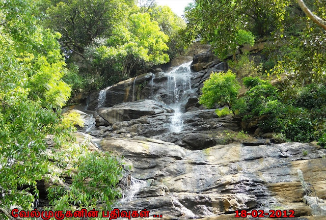 Yercaud Killiyur Waterfalls