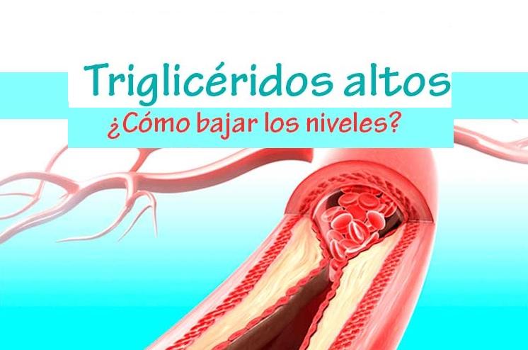 Alimentos que ayudan a reducir los triglic ridos stevia natural - Alimentos que bajen los trigliceridos ...