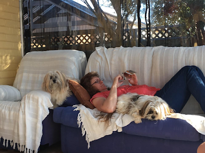 The dogs and Mum relaxing on the couch in the sun