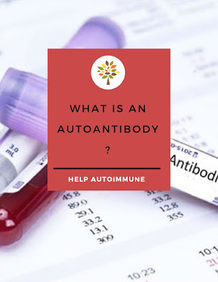 What is an Autoantibody?