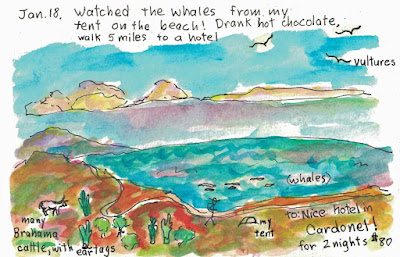 Baja California, Mexico sketchbook diary is available for purchase.