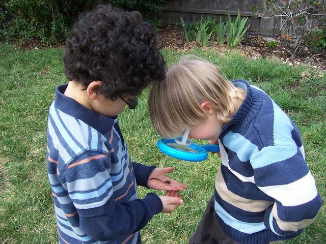 Montessori on a Budget (previously Montessori for the Earth)