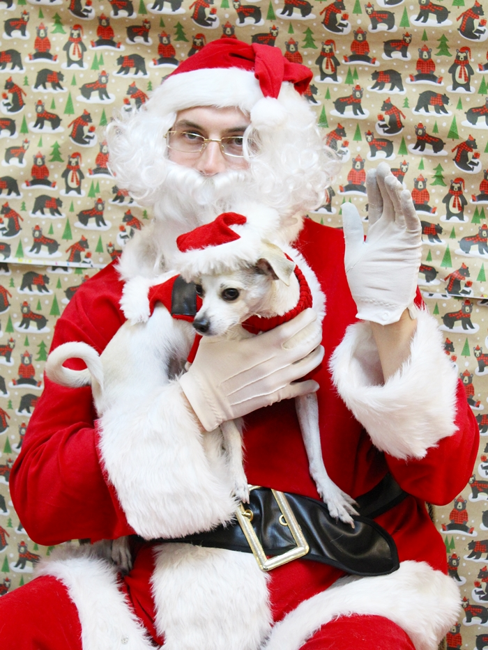 Santa Happy meets Santa Claus at PetSmart! #gatheraround