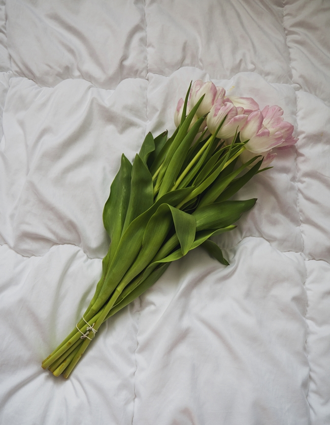 dłużej świeże tulipany