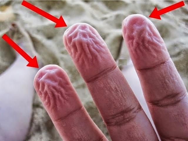 shrink fingers, wet fingers, bheegi ungliyan
