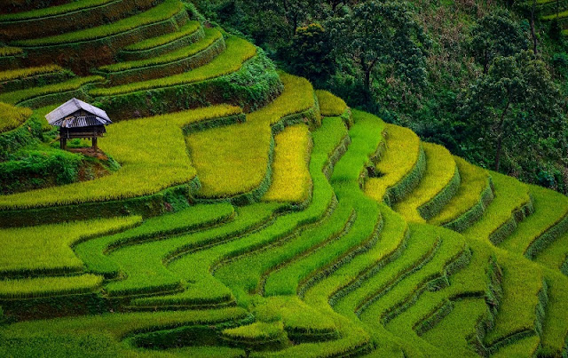 The charming beauty of Northern Vietnam in pictures 2