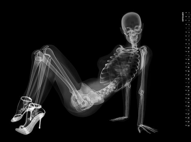 Eizo nude X-ray calender 2010 september